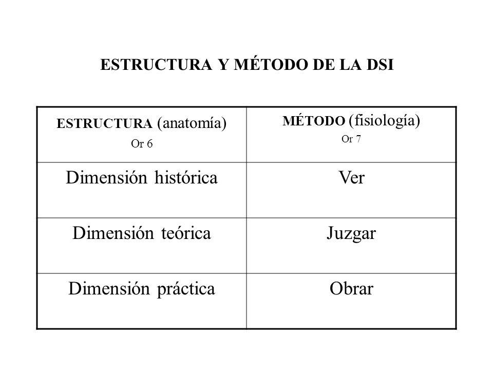 ESTRUCTURA Y MÉTODO DE LA DSI