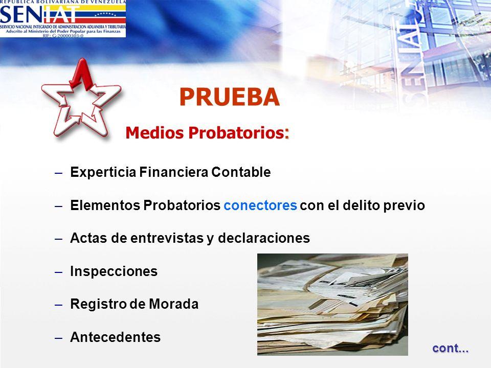 PRUEBA Medios Probatorios: Experticia Financiera Contable