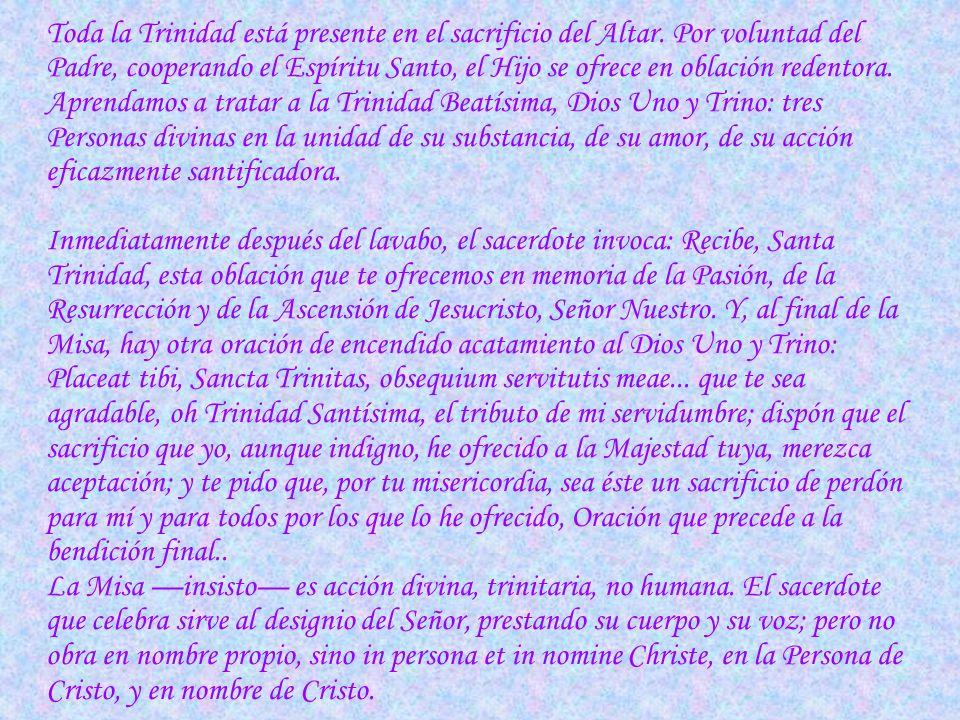 Toda la Trinidad está presente en el sacrificio del Altar