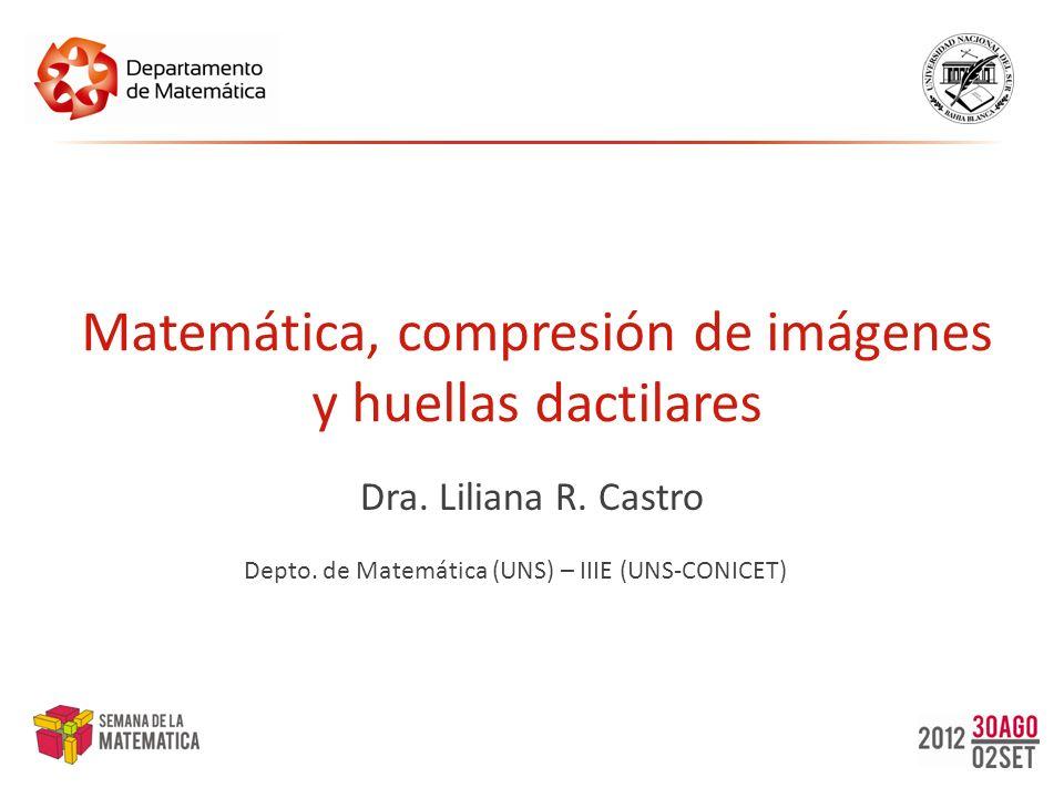 Matemática, compresión de imágenes y huellas dactilares