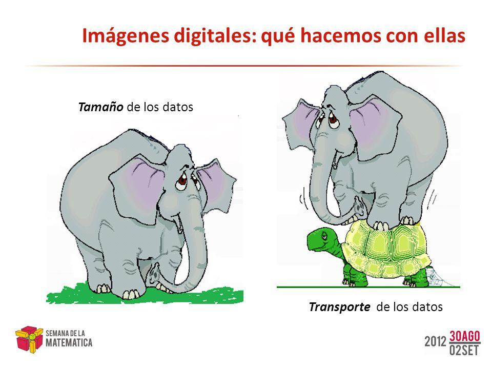 Imágenes digitales: qué hacemos con ellas