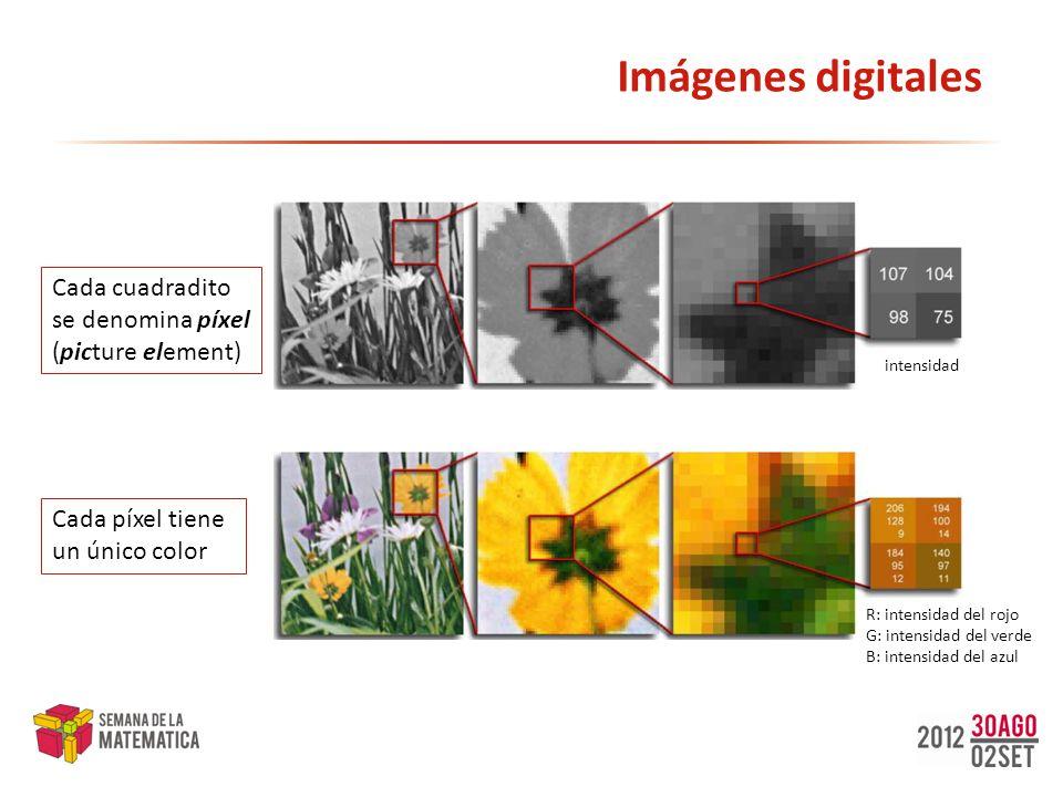 Imágenes digitales Cada cuadradito se denomina píxel (picture element)