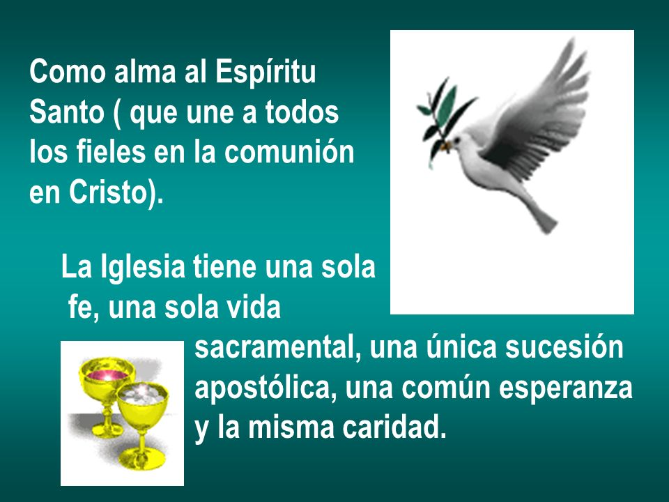 Como alma al Espíritu Santo ( que une a todos. los fieles en la comunión. en Cristo). La Iglesia tiene una sola.