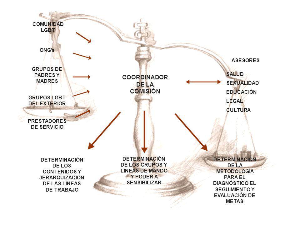 COORDINADOR DE LA COMISIÓN