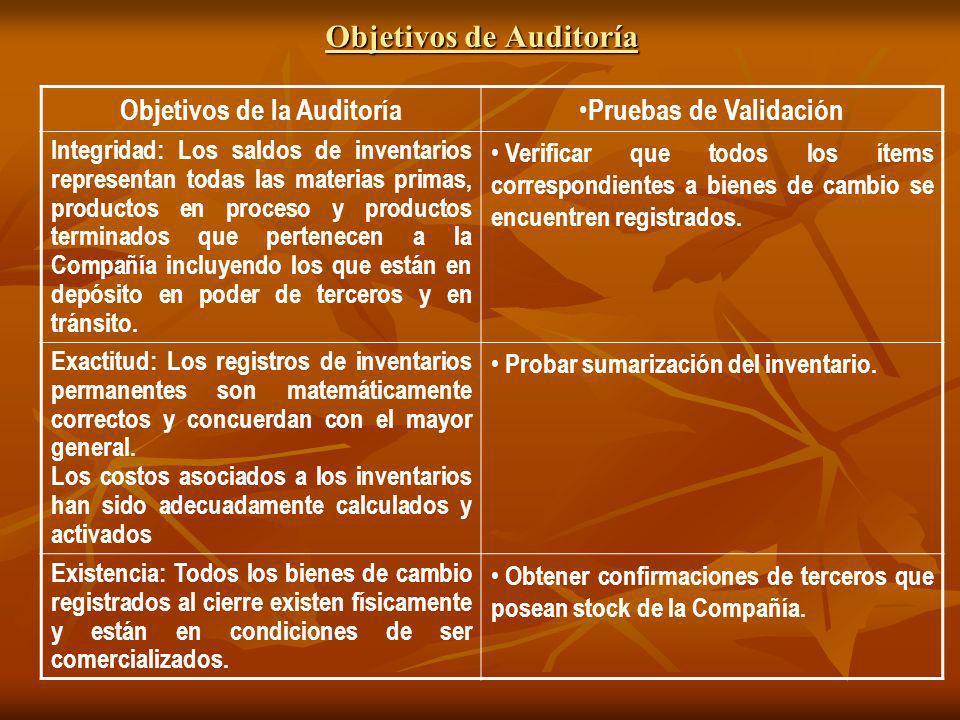 Objetivos de Auditoría
