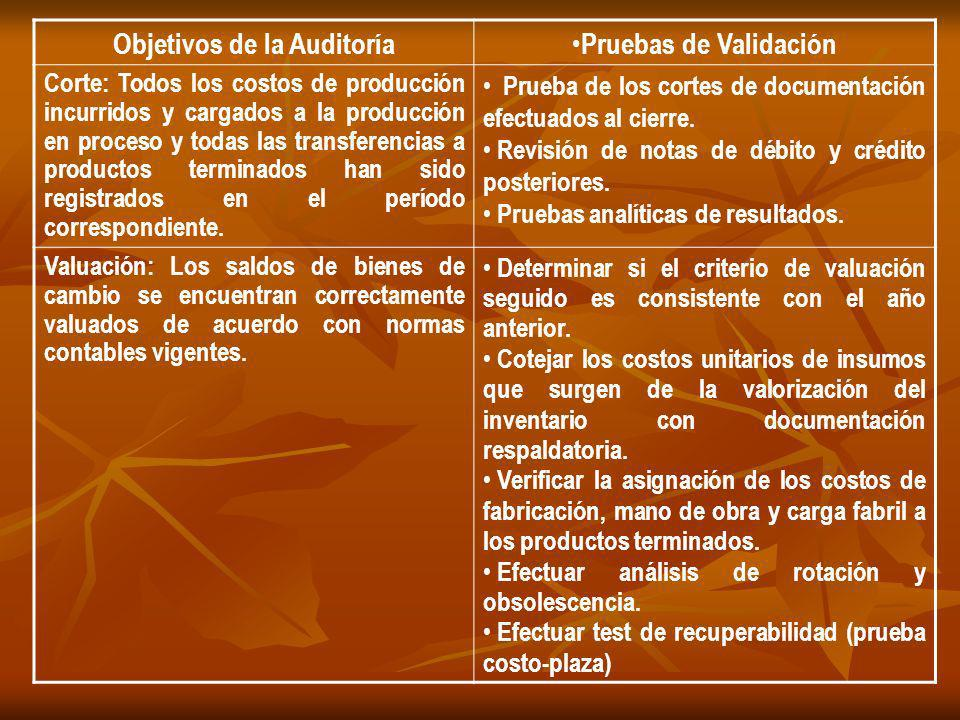 Objetivos de la Auditoría