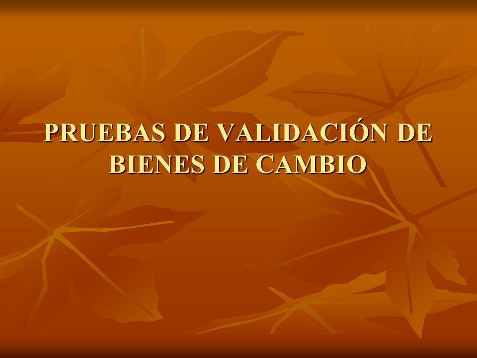 PRUEBAS DE VALIDACIÓN DE BIENES DE CAMBIO
