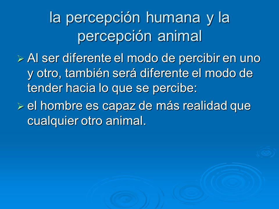 la percepción humana y la percepción animal