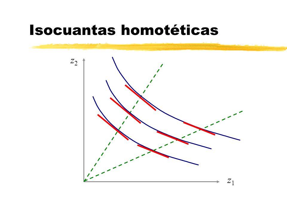 Isocuantas homotéticas