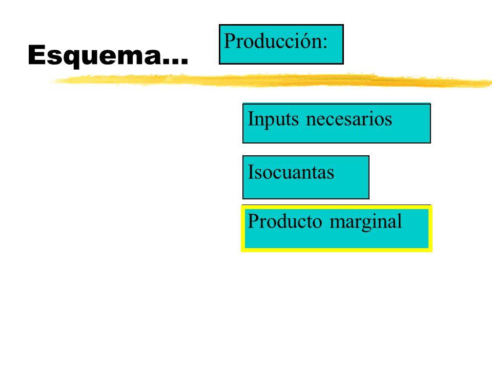 Esquema... Producción: Inputs necesarios Isocuantas Producto marginal