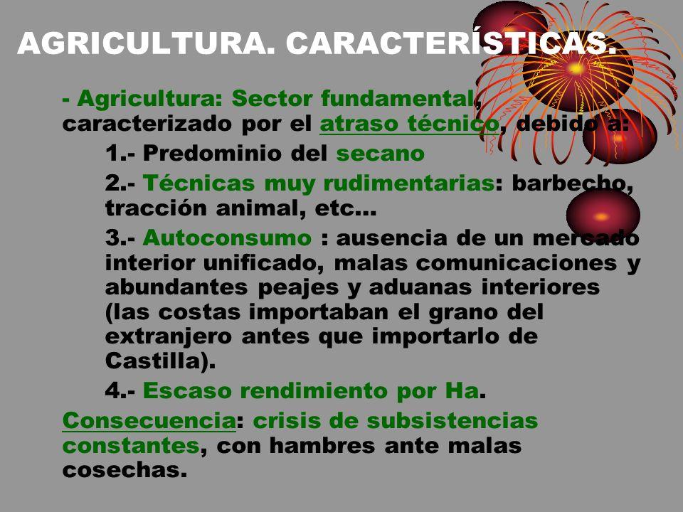 AGRICULTURA. CARACTERÍSTICAS.