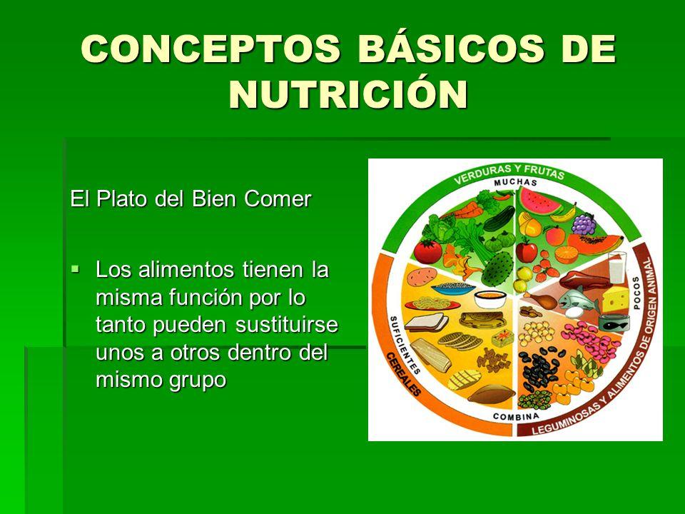 CONCEPTOS BÁSICOS DE NUTRICIÓN