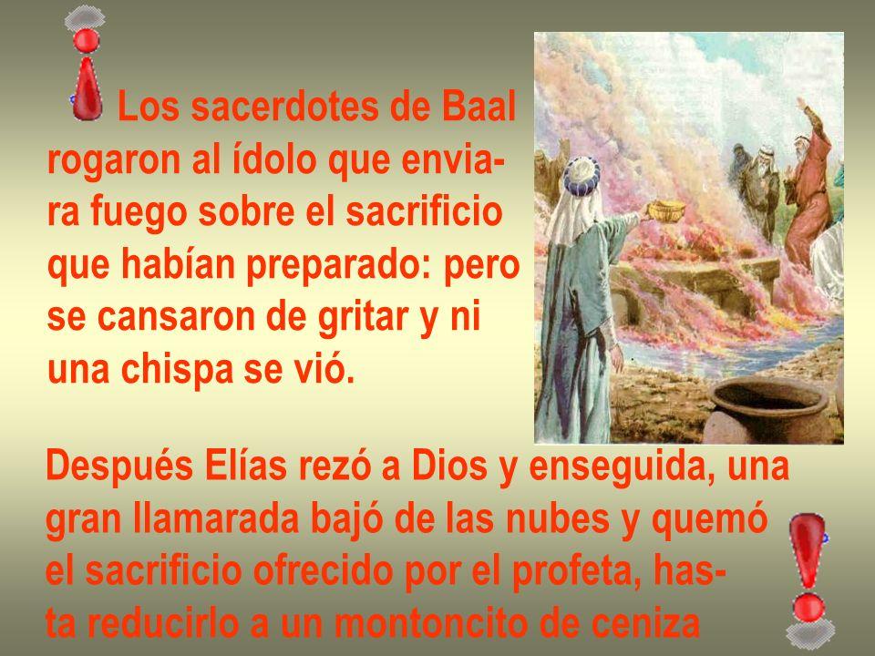 Los sacerdotes de Baal rogaron al ídolo que envia- ra fuego sobre el sacrificio. que habían preparado: pero.