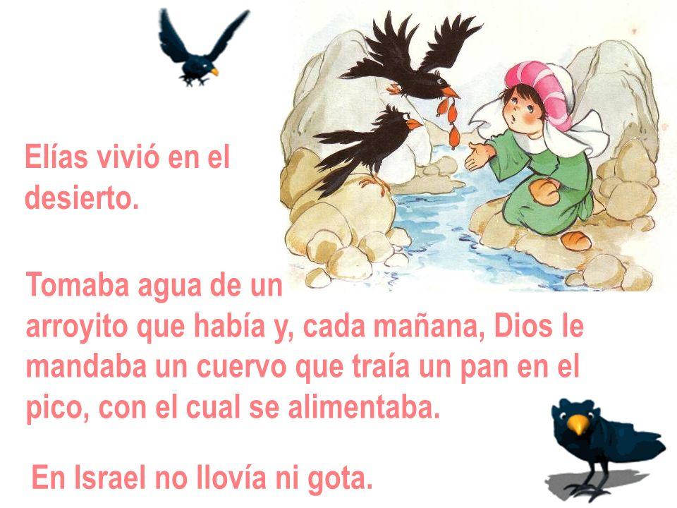 Elías vivió en eldesierto. Tomaba agua de un. arroyito que había y, cada mañana, Dios le. mandaba un cuervo que traía un pan en el.
