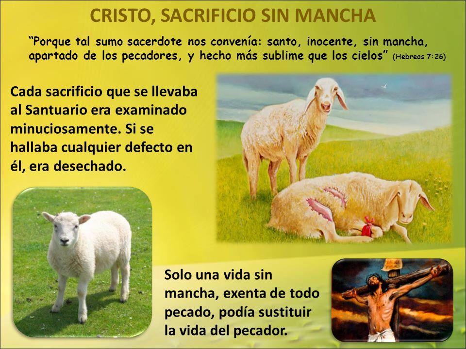 CRISTO, SACRIFICIO SIN MANCHA