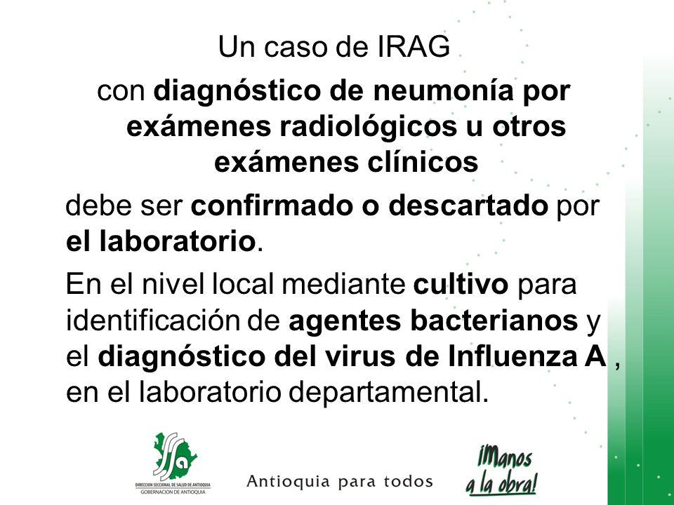 Un caso de IRAG con diagnóstico de neumonía por exámenes radiológicos u otros exámenes clínicos.