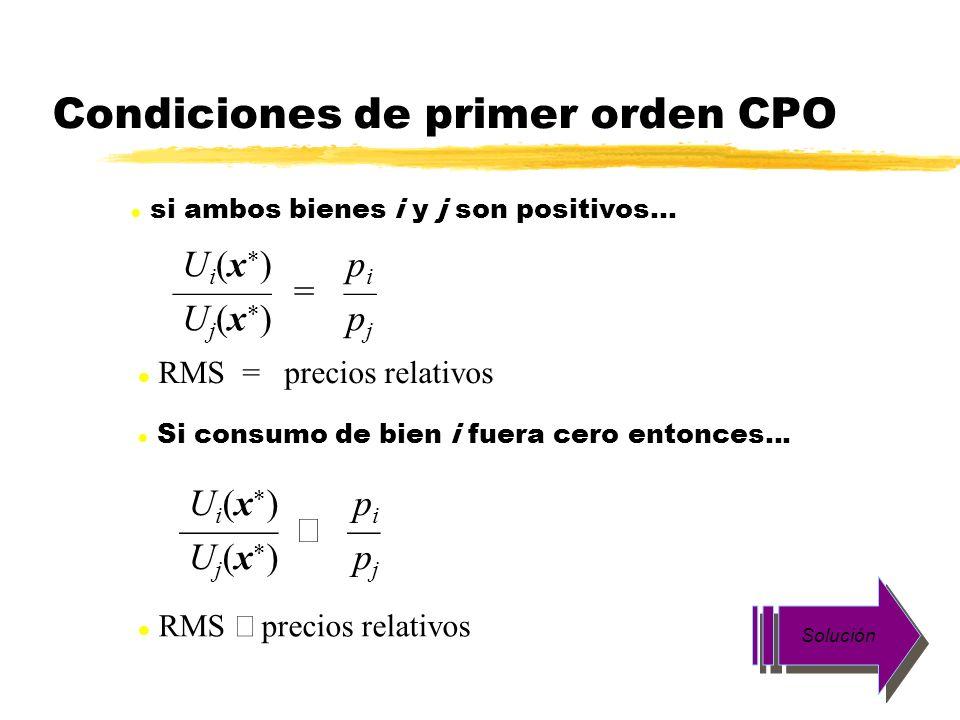 Condiciones de primer orden CPO