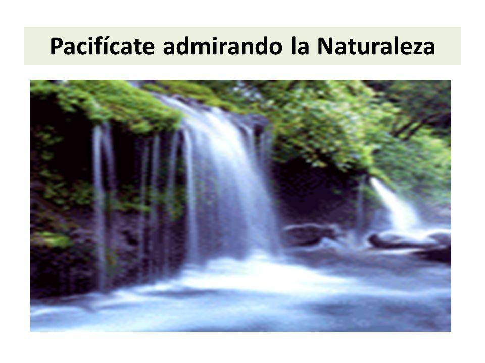 Pacifícate admirando la Naturaleza