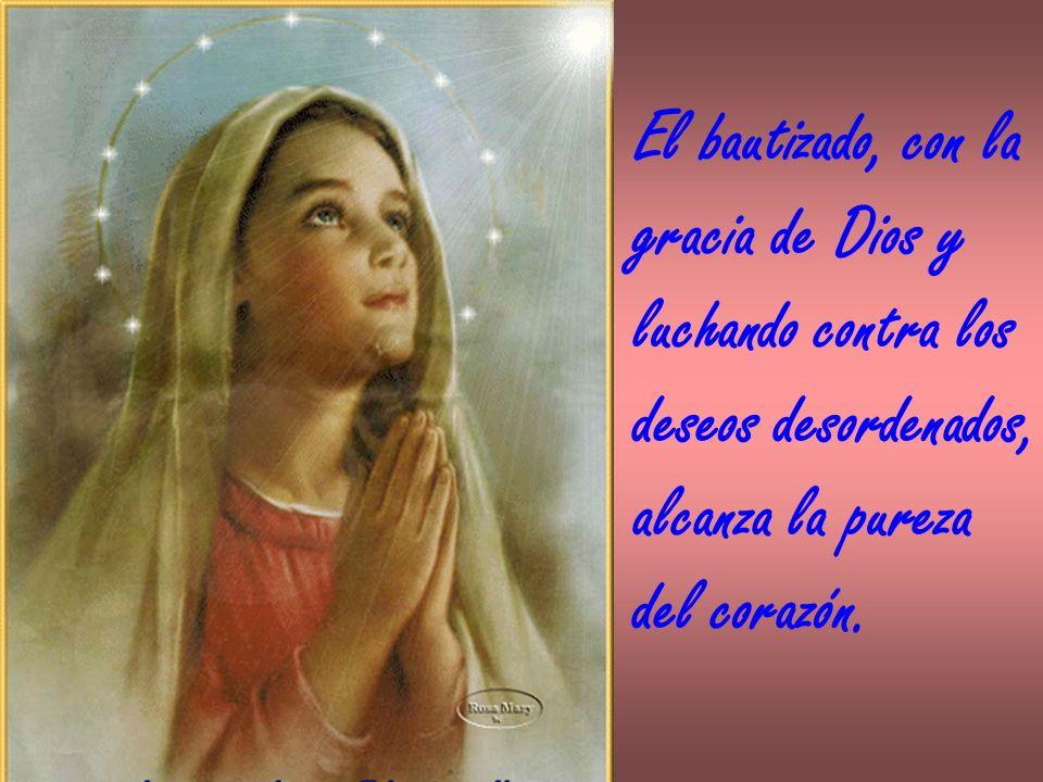 El bautizado, con la gracia de Dios y. luchando contra los. deseos desordenados, alcanza la pureza.