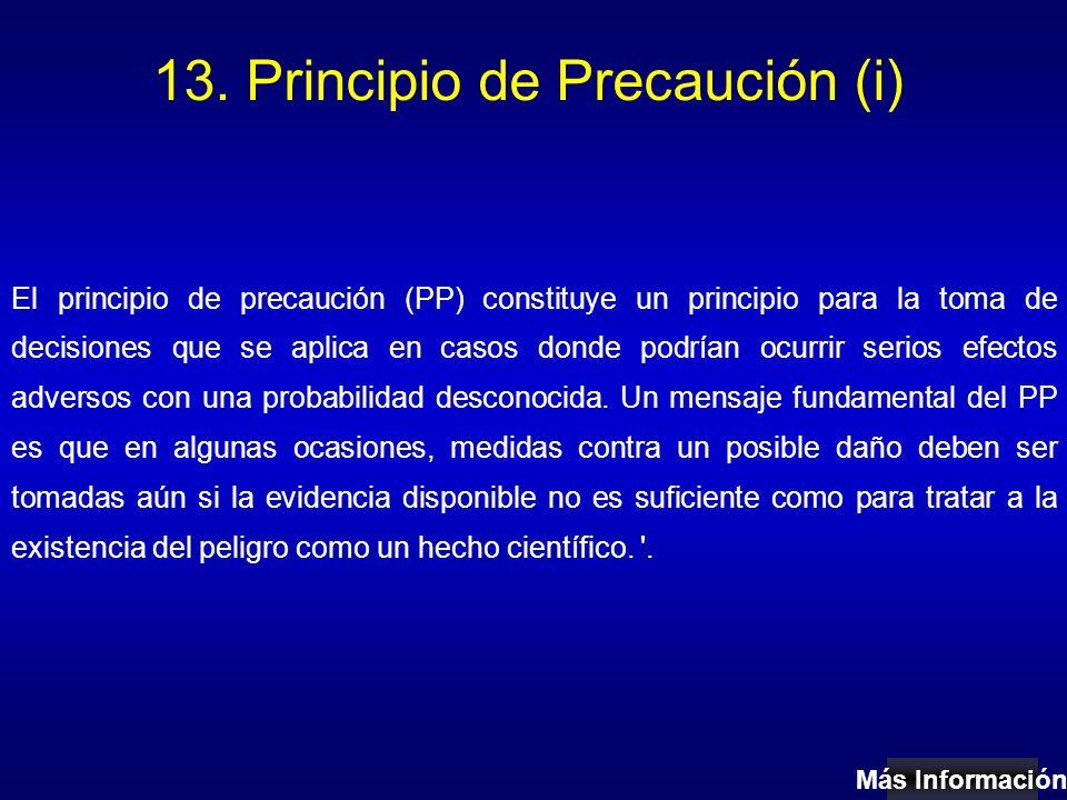 13. Principio de Precaución (i)