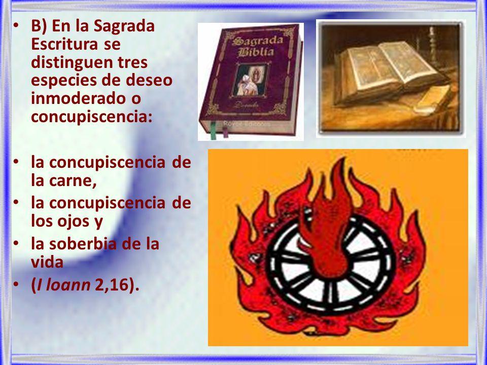 B) En la Sagrada Escritura se distinguen tres especies de deseo inmoderado o concupiscencia: