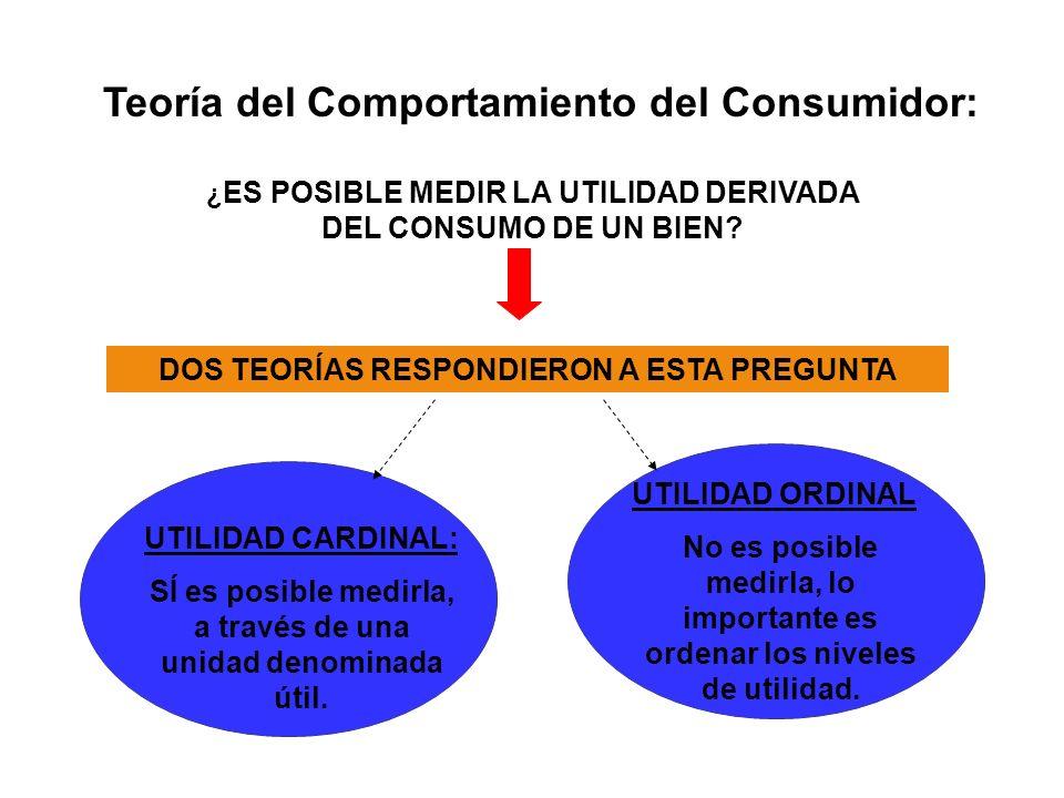 Teoría del Comportamiento del Consumidor: