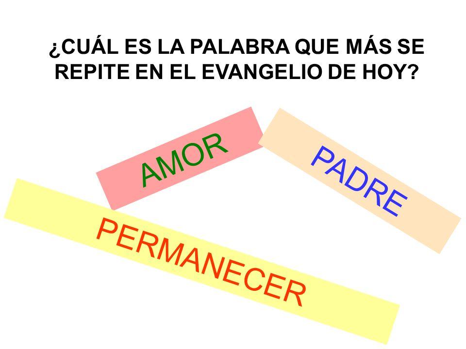 ¿CUÁL ES LA PALABRA QUE MÁS SE REPITE EN EL EVANGELIO DE HOY