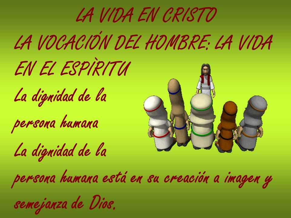 LA VIDA EN CRISTO LA VOCACIÓN DEL HOMBRE: LA VIDA. EN EL ESPÌRITU. La dignidad de la. persona humana.