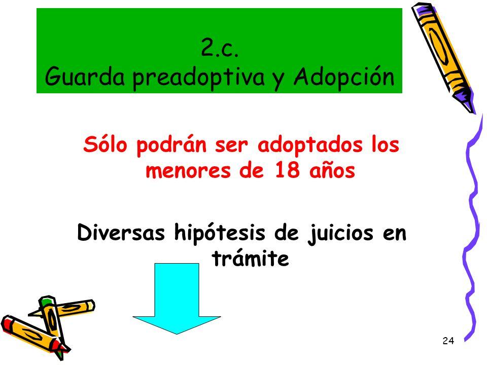 2.c. Guarda preadoptiva y Adopción