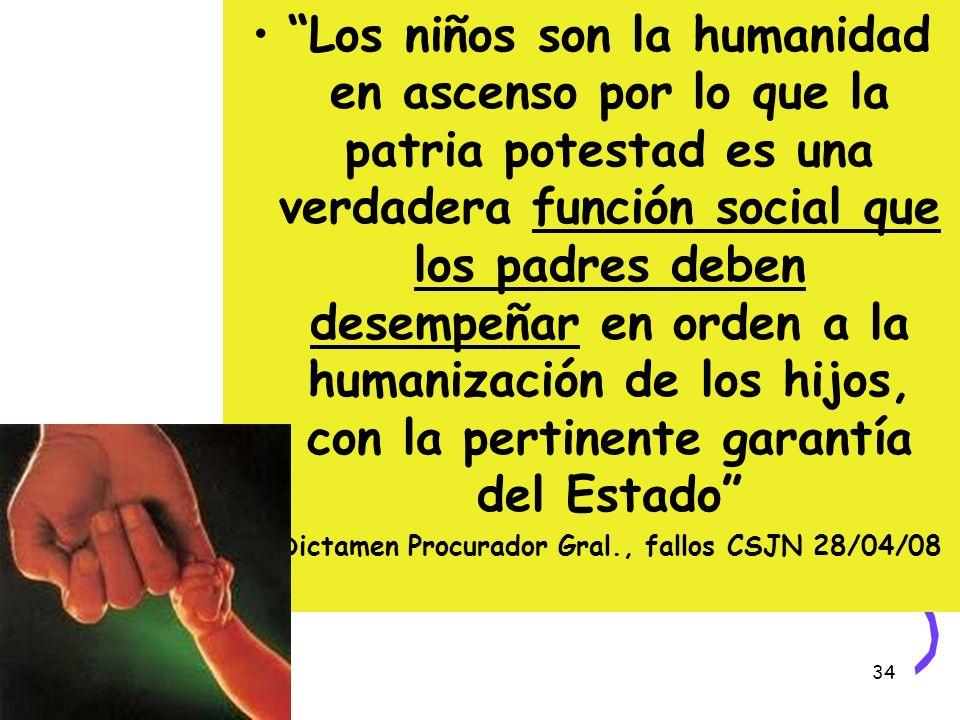 Dictamen Procurador Gral., fallos CSJN 28/04/08