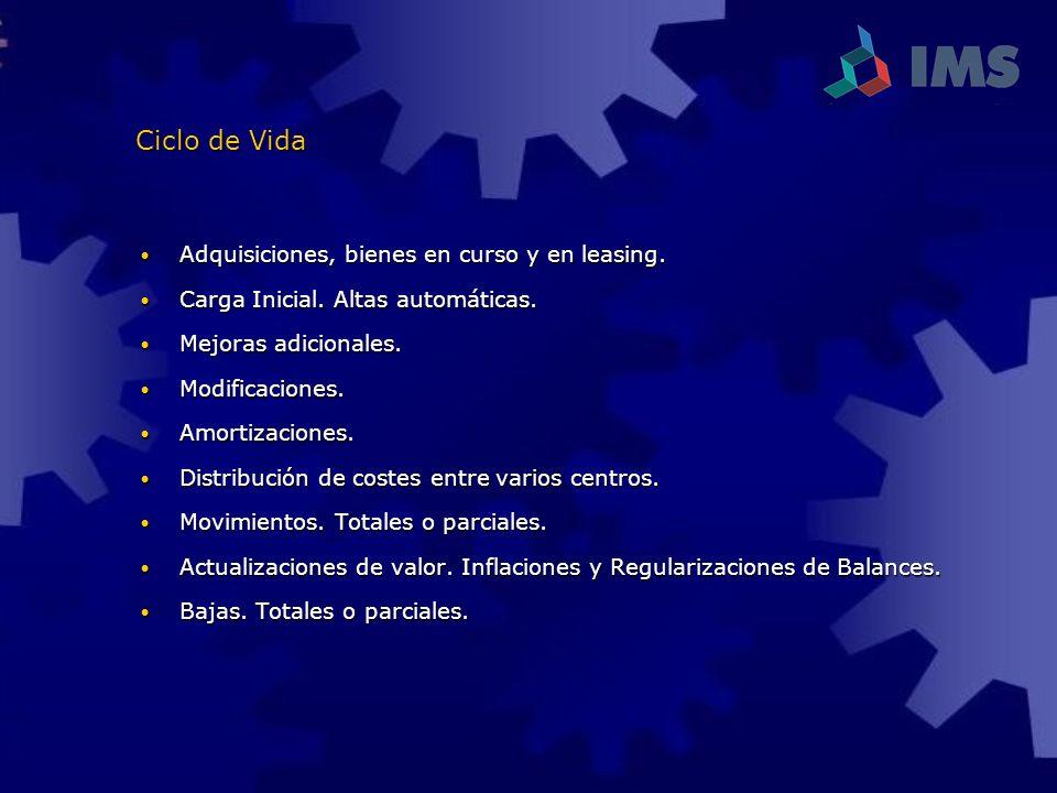 Ciclo de Vida Adquisiciones, bienes en curso y en leasing.