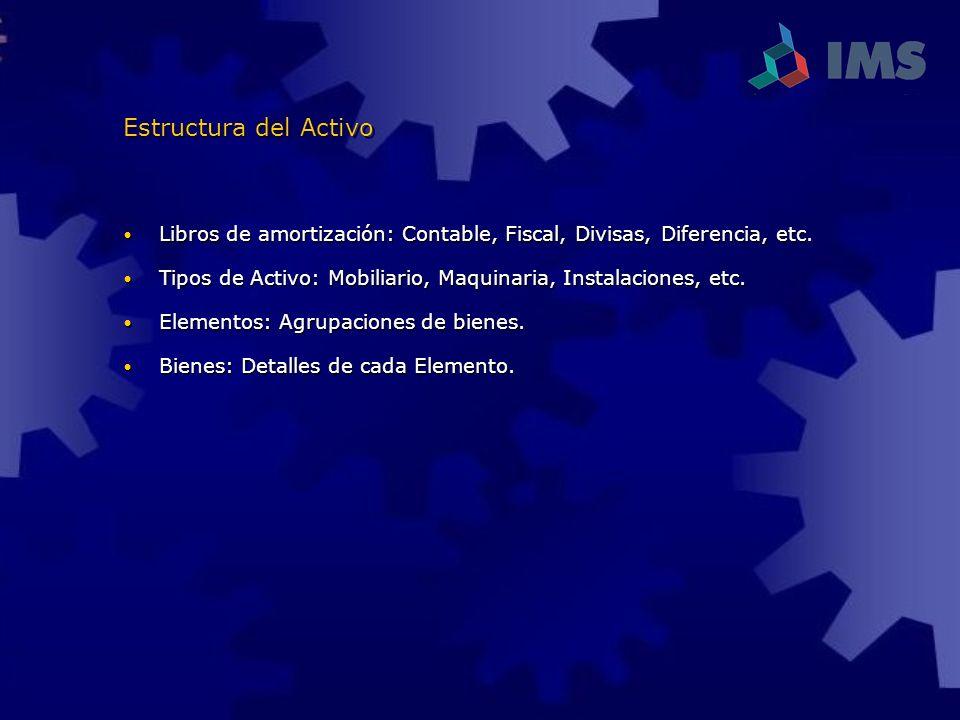 Estructura del Activo Libros de amortización: Contable, Fiscal, Divisas, Diferencia, etc.