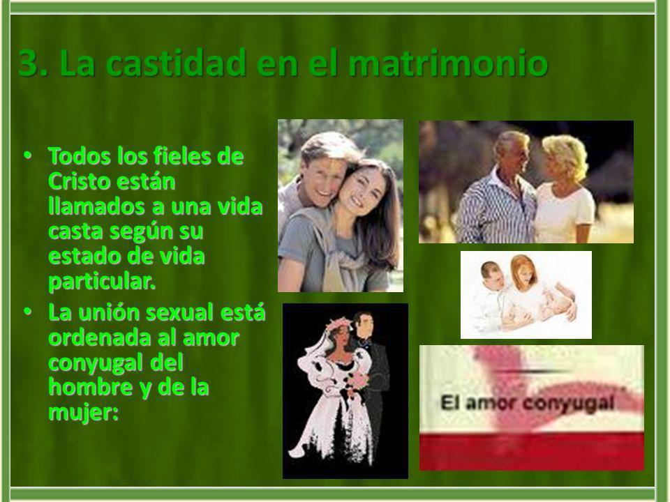 3. La castidad en el matrimonio