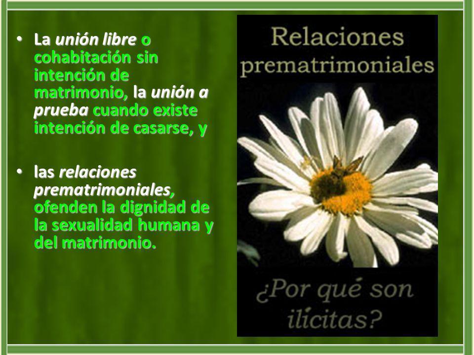 La unión libre o cohabitación sin intención de matrimonio, la unión a prueba cuando existe intención de casarse, y