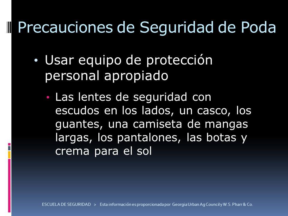 Precauciones de Seguridad de Poda