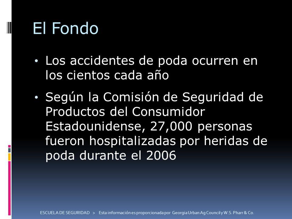 El Fondo Los accidentes de poda ocurren en los cientos cada año