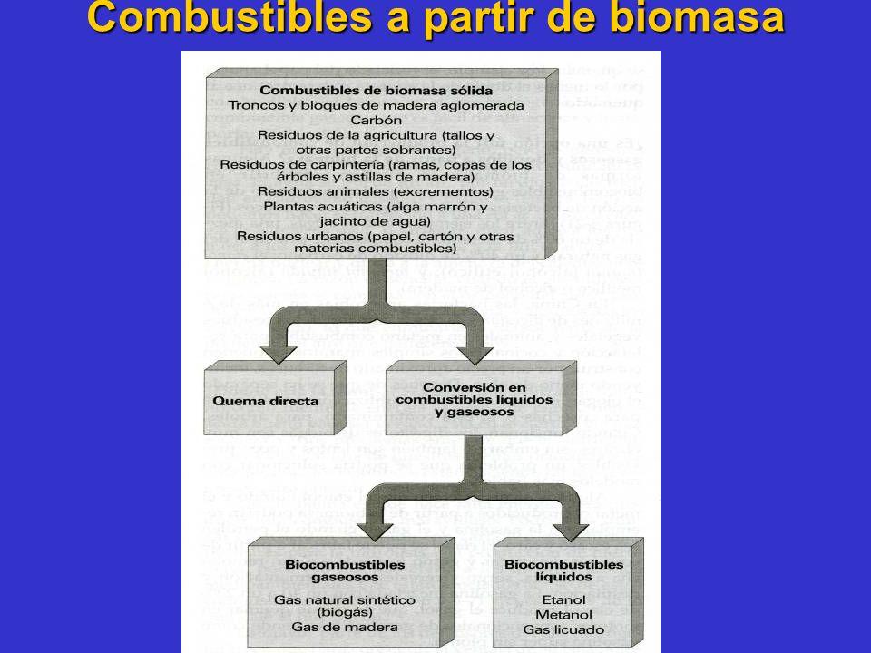 Combustibles a partir de biomasa