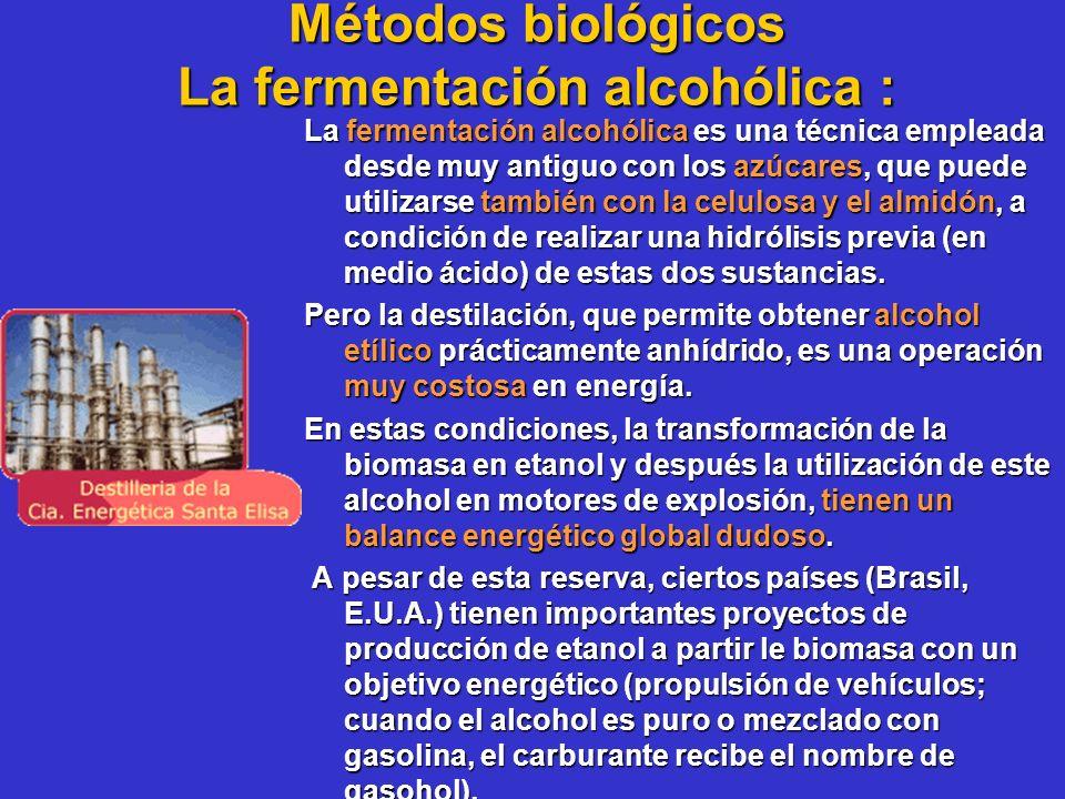 Métodos biológicos La fermentación alcohólica :