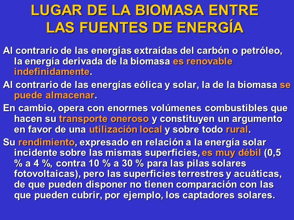 LUGAR DE LA BIOMASA ENTRE LAS FUENTES DE ENERGÍA