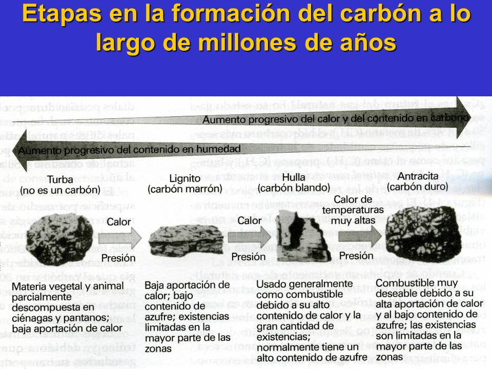 Etapas en la formación del carbón a lo largo de millones de años