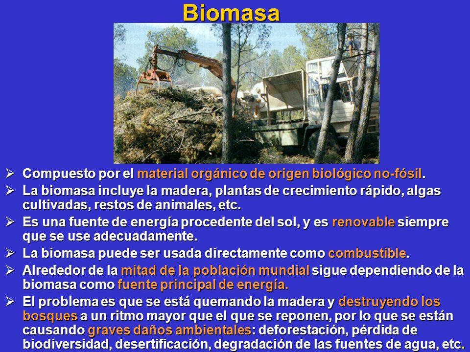 Biomasa Compuesto por el material orgánico de origen biológico no-fósil.