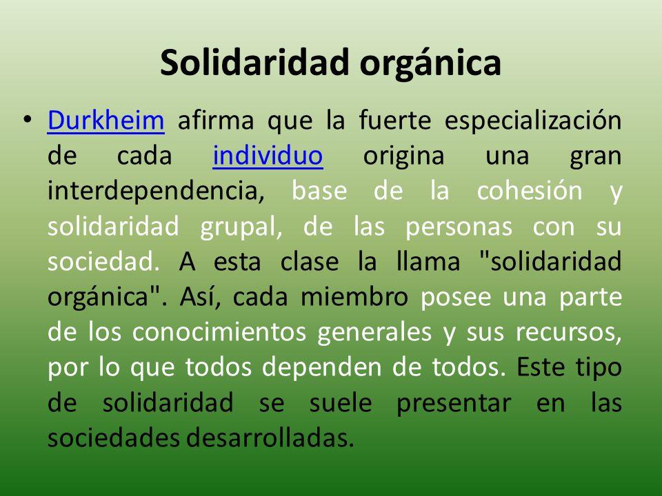 Solidaridad orgánica