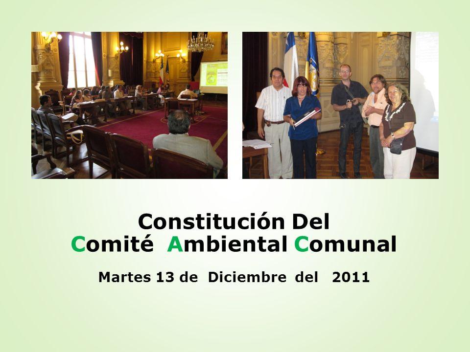 Comité Ambiental Comunal Martes 13 de Diciembre del 2011