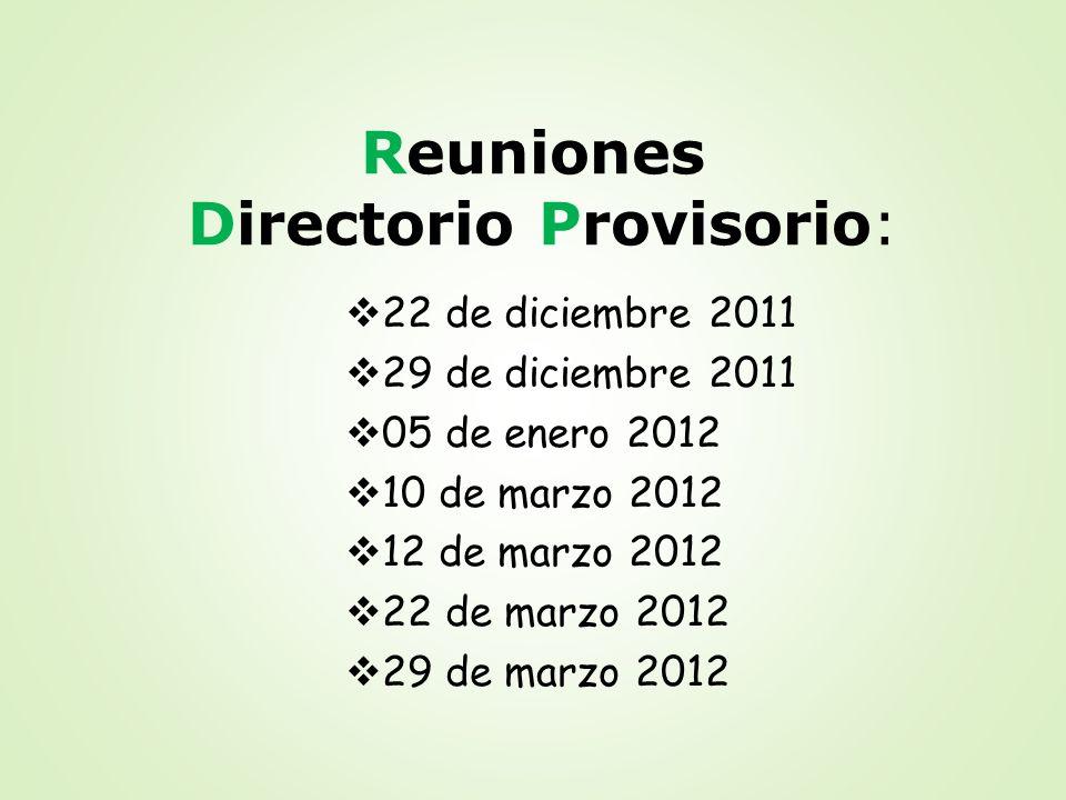 Reuniones Directorio Provisorio: