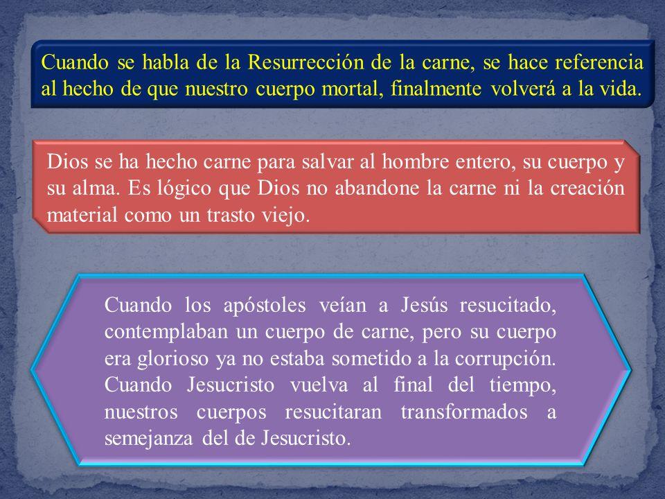 Cuando se habla de la Resurrección de la carne, se hace referencia al hecho de que nuestro cuerpo mortal, finalmente volverá a la vida.