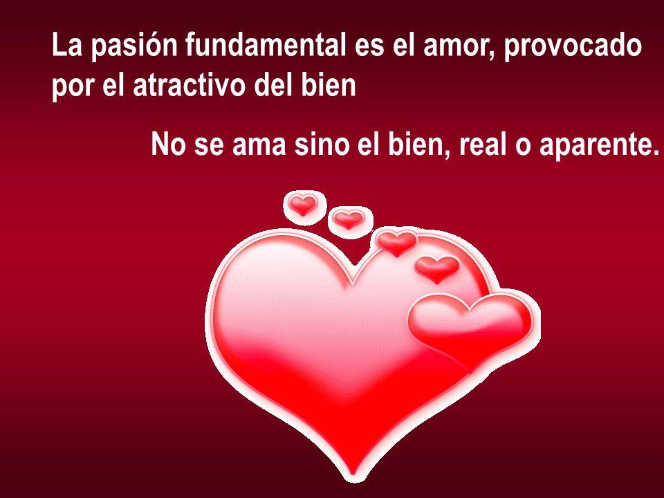 La pasión fundamental es el amor, provocado