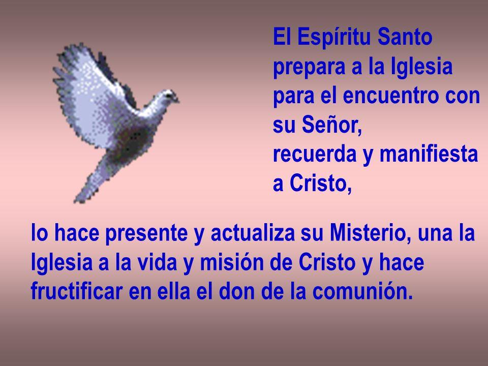 El Espíritu Santoprepara a la Iglesia. para el encuentro con. su Señor, recuerda y manifiesta. a Cristo,