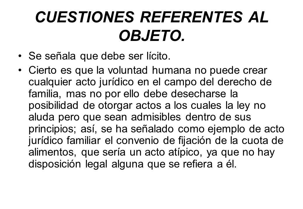 CUESTIONES REFERENTES AL OBJETO.