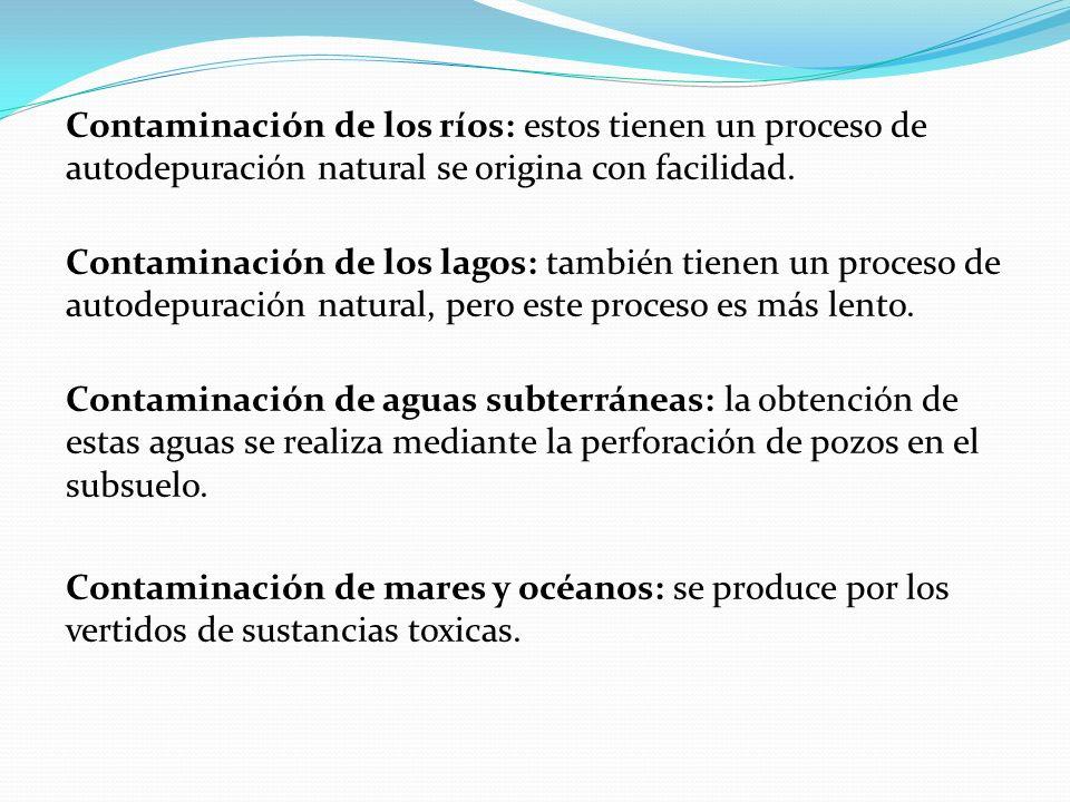 Contaminación de los ríos: estos tienen un proceso de autodepuración natural se origina con facilidad.