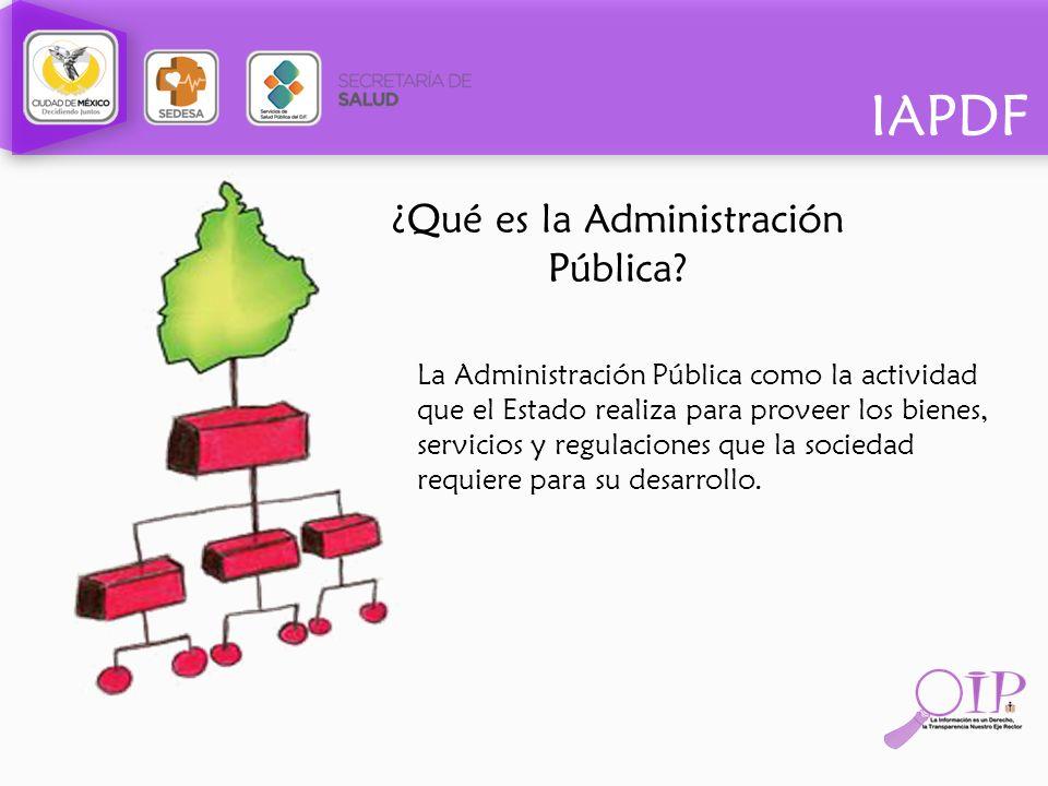 ¿Qué es la Administración Pública